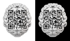 QR code brain Stock Photo