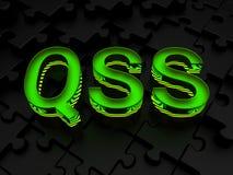 QSS (schnelle Sicherheit gegründet) stockfotografie