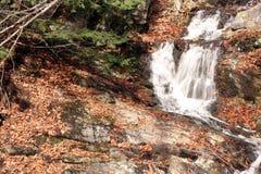 Québec d'Au d'automne d'en de nature de La/belle cascade Photographie stock libre de droits