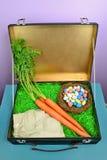 Qué la Pascua Bunny Packs Fotos de archivo
