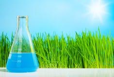 Química de la primavera Imagen de archivo libre de regalías