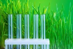 Química verde Imagenes de archivo