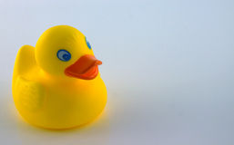 Quack. A little childs rubber duck toy for the bathroom stock photo