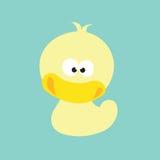 quacked的鸭子  库存图片