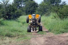 Quad. Riding on its back wheels Stock Images