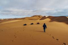 Quad Bike Excursions in Namibia Royalty Free Stock Image