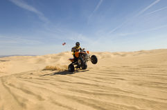 Quad Bike Rider Doing Wheelie In Desert Stock Image