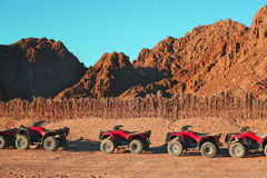 Quad bike safari trip into desert in Egypt Royalty Free Stock Photo