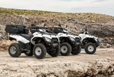 Quad bikes at a rough terrain Stock Photo