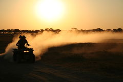 Quad biking in Botswana. Quad biking as the sun fell in central Botswana Royalty Free Stock Photos