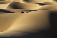 Quad dunes. Quad Motorbike race in the sahara dunes Stock Photo