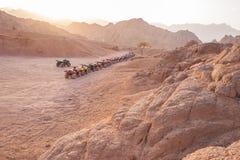 Quad il safari della motocicletta in deserto, lo Sharm el Sheikh, Egitto fotografie stock