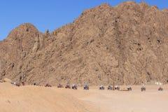 Quad il safari della motocicletta nel deserto del Sinai, lo Sharm el Sheikh, Egitto, un viaggio sui quadrocycles della montagna d fotografia stock
