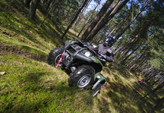 Quad In Forest (ATV) Royalty Free Stock Photo