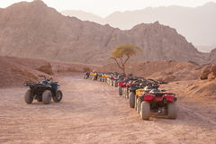 Quad motorbike safari in desert, Sharm el Sheikh, Egypt Stock Photo