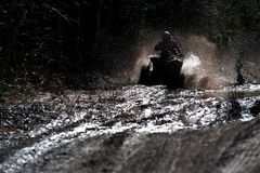 Quad in the mud. Dynamic photo of quad speeding in muddy terrain Stock Image