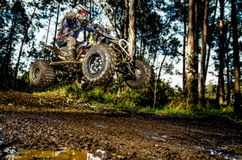 Quad rider jumping. On a muddy forest trail Royalty Free Stock Images