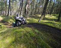 Quad speeding in forest (ATV). A quad speeding through a forest, motion blurred vehicle. (ATV Stock Photography