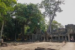 Quad in the temple area of Bayon Temple at Angkor Thom. stock images
