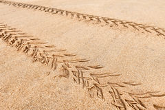 Quad traces on the beach sand Royalty Free Stock Photo