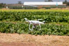 Quadcopter трутня завишет на предпосылке неба, камере трутня, в ферме Стоковая Фотография