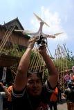 Quadcopter Stockbild