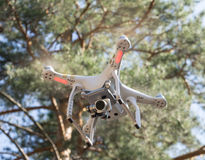 Quadcopter in the forest. Quadcopter in the Russian forest Stock Image