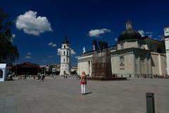 Quadrado da catedral em Vilnius Imagem de Stock Royalty Free