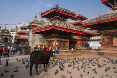 Quadrado de Durbar em Kathmandu Foto de Stock Royalty Free