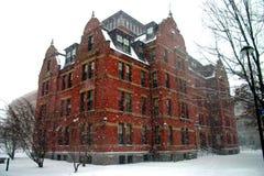 Quadrado de Harvard, EUA Imagens de Stock Royalty Free