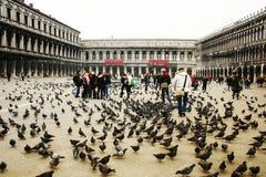 Quadrado de marcas de Saint Veneza Fotos de Stock Royalty Free