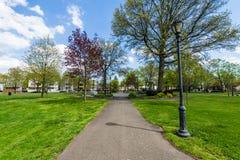 Quadrado de Wooster e distrito histórico circunvizinho em New Haven Co foto de stock royalty free