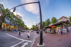 Quadrado em Cambridge, miliampère de Harvard, EUA Foto de Stock