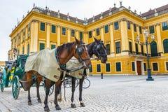 Quadrado principal do palácio de Schonbrunn em Viena, Áustria imagem de stock