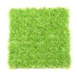 Quadrat der grünen Rasenfläche Lizenzfreie Stockbilder