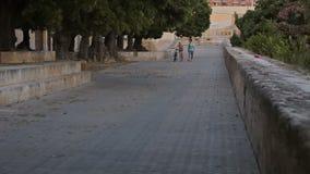Quadrati del palazzo di Almudaina della La video d archivio