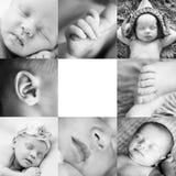 Quadratische Collage von acht Schwarzweiss von einem schlafenden neugeborenen Baby Lizenzfreie Stockbilder