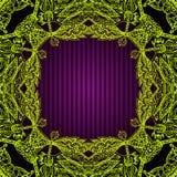 Quadratische dekorative Grenze Lizenzfreies Stockfoto