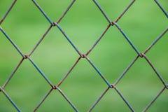 Quadratische Drahtwand mit undeutlichem grünem Hintergrund Stockfotos