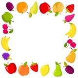 Quadratische Fahne des Vektors mit Früchten Lizenzfreies Stockbild