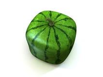 Quadratische Melone Lizenzfreie Stockbilder