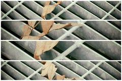 Quadratische Metallluke in der städtischen Pflasterung, im Abwasserkanalkanaldeckel mit Markierungslinien und im Blatt nach innen Lizenzfreie Stockfotografie