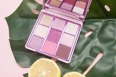 Quadratische Palette von rosa und nackten Schatten auf einem rosa Hintergrund mit grüner Draufsicht des Blattes und der Zitrone lizenzfreies stockfoto