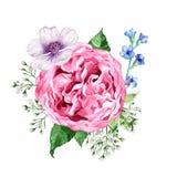 Quadratische Zusammensetzung von den Blumenrosen, von Hortensie, von Apfelbaumblumen und von Blättern in der Aquarellart lokalisi Stockbilder