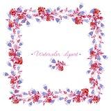Quadratischer blauer, rosa und roter mit Blumenrahmen Cliparts für Heiratsdesign, künstlerische Schaffen Stockfoto