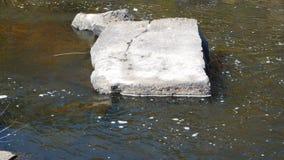 Quadratischer Felsen stockbild