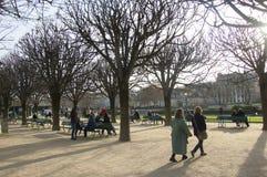 Quadratischer Jean bei Notre Dame Stockbild