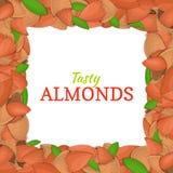 Quadratischer Rahmen bestanden aus köstlicher Mandelnuß Vektorkartenillustration Nüsse, Mandeln tragen im Oberteil Früchte, ganz Lizenzfreie Stockfotos