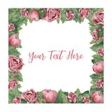 Quadratischer Rahmen gemacht von den rosa blühenden Rosen lizenzfreie abbildung