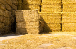 Quadratisches goldenes gelbes Straw Bales Stockfotos